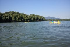 Dunakanyar vízitúra